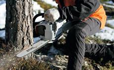Моторни триони за горското стопанство и дърводобив STIHL